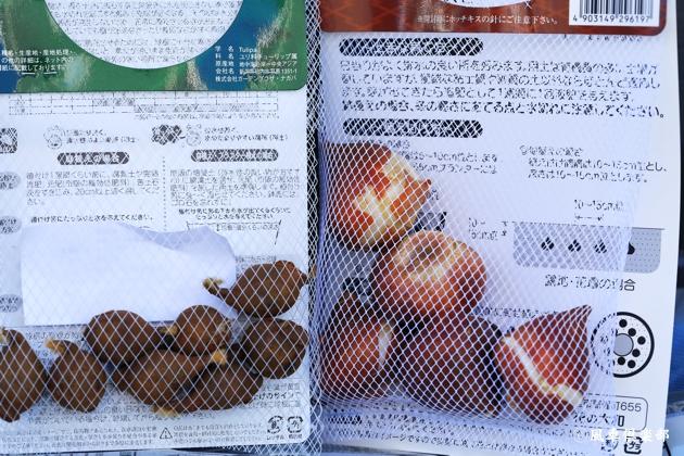 kazaguruma-club_3961.JPG